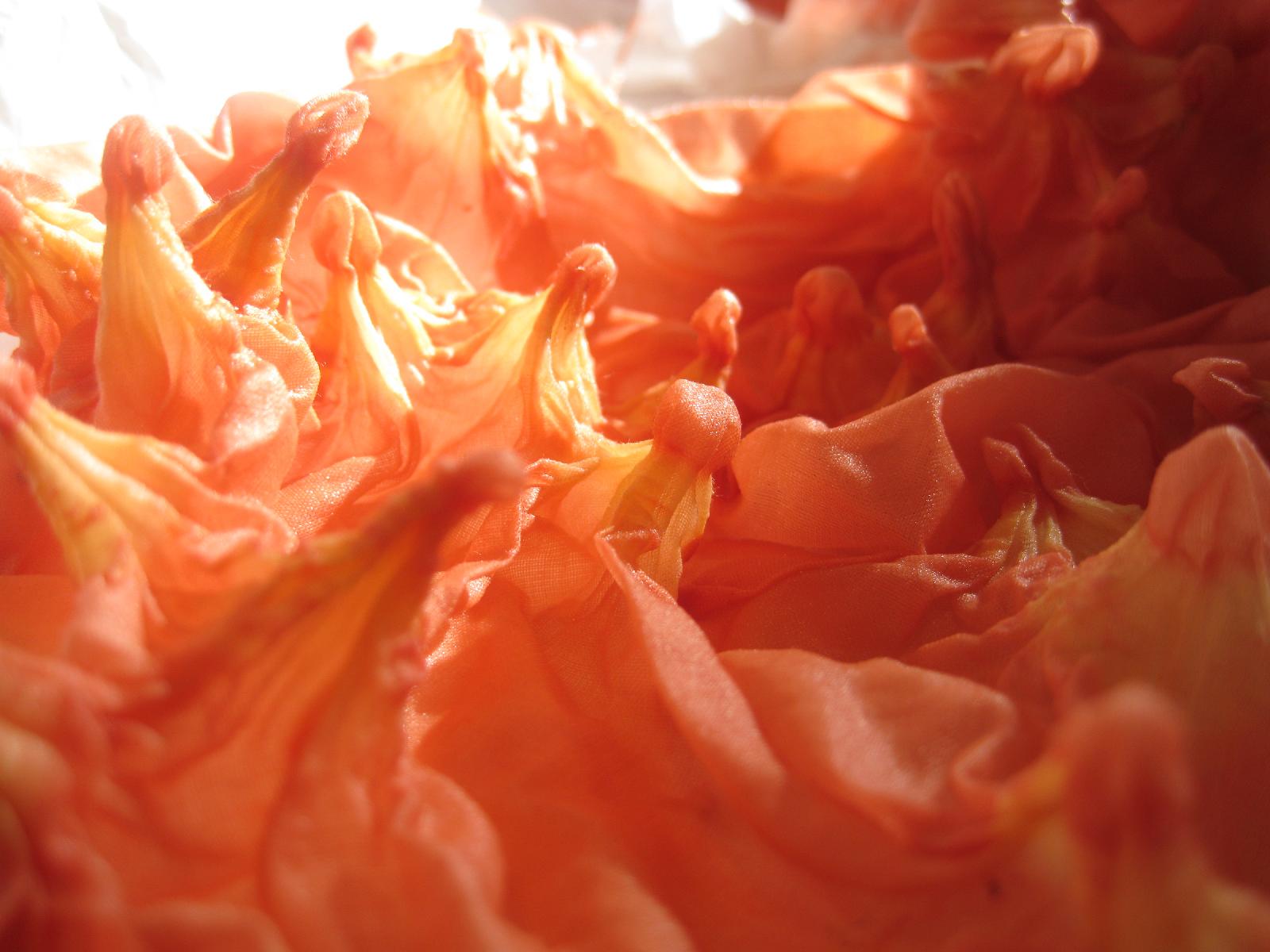 shibori after plant dyeing